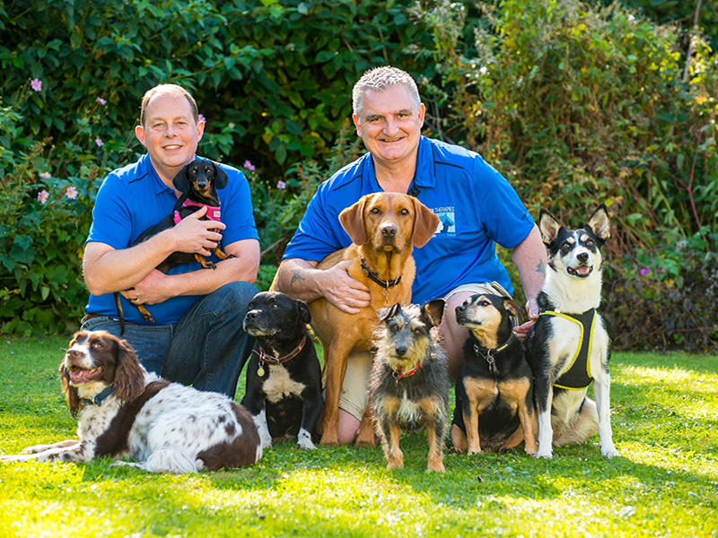 Emmett for Dogs - Tony Sherry & John Rea